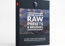 Adobe Camera Raw 11.0 Free Download